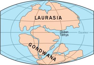 What is Gondwana?