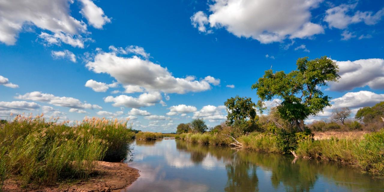 National Park Landscape