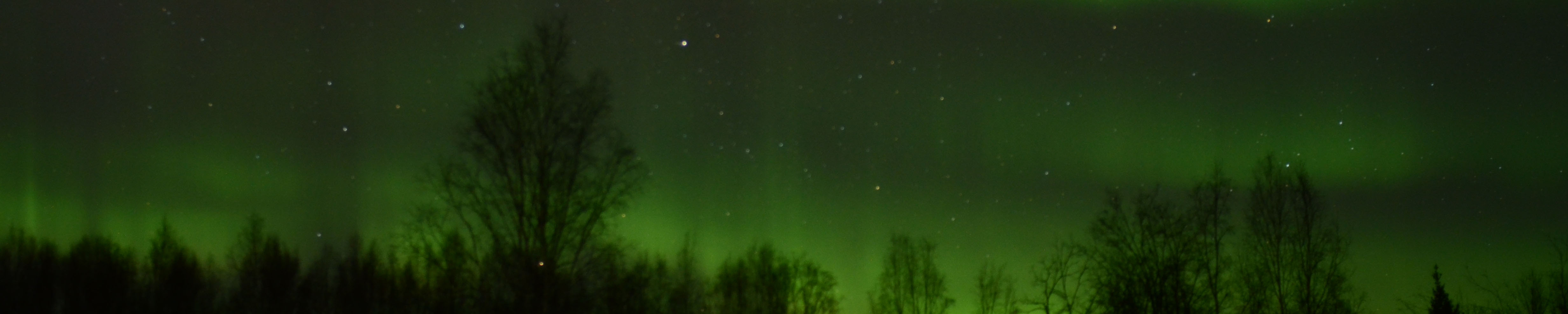 Northern Lights in Fairbanks