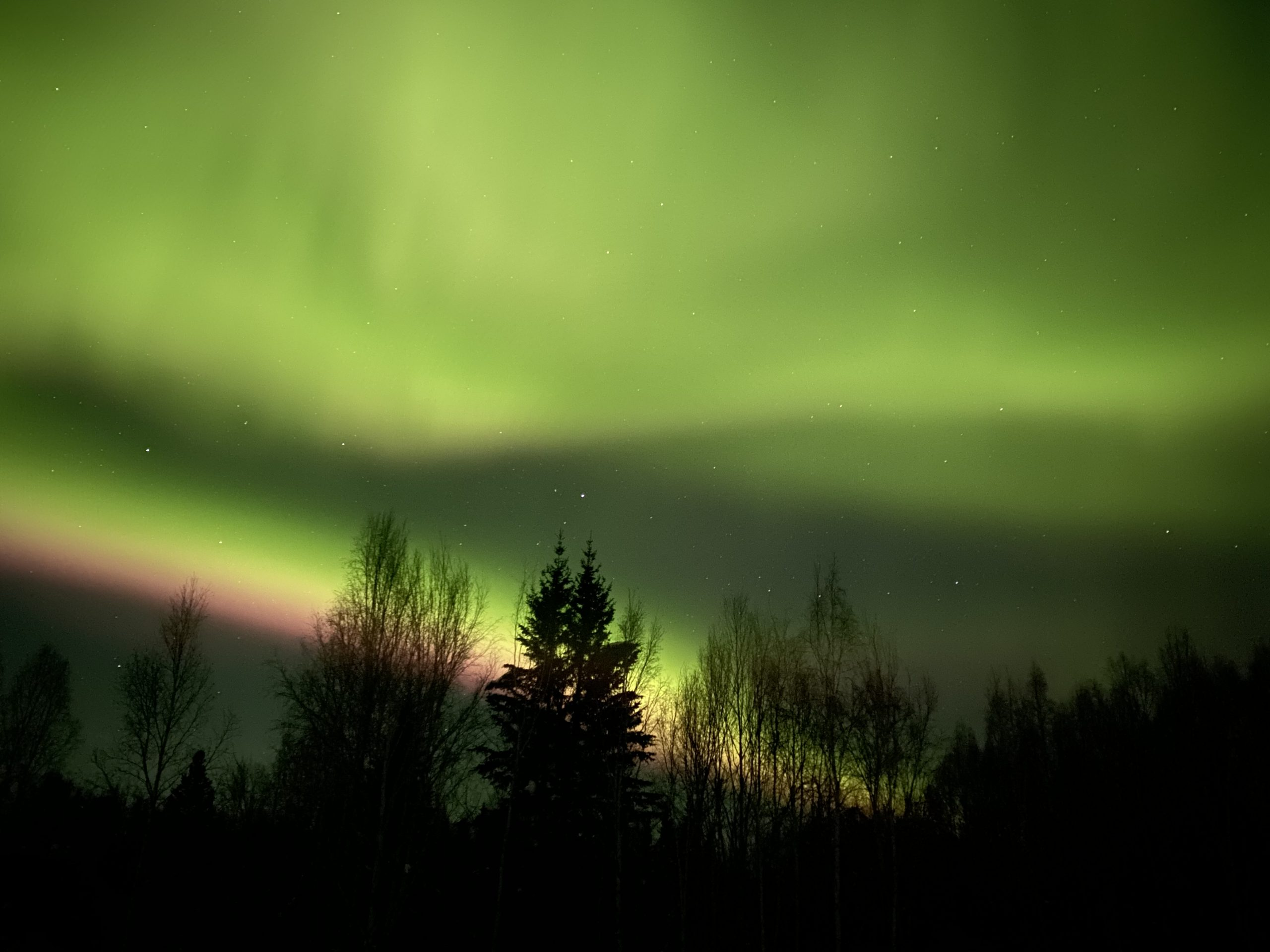 when are the northern lights in alaska