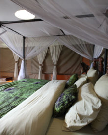 Typical accommodations at a safari camp