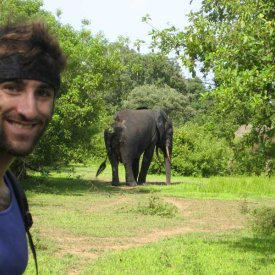 Jared Sternberg a with Wild African Elephant