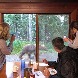 Watching bears while having lunch in Katmai National Park at Brooks Lodge.