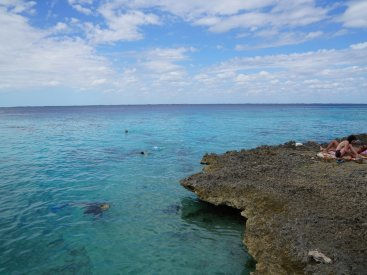 The snorkeling in Zapata National Park is fantastic, the water is so clear!