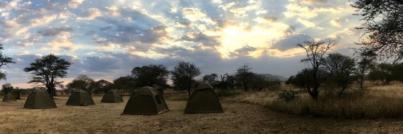 Campsite in the Serengeti